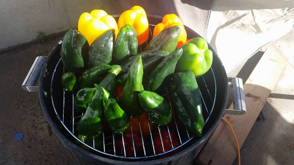 Peppers ready for smoking!